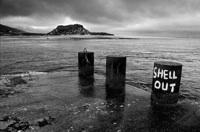 shellout.jpg