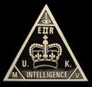 ukintelligence.jpg